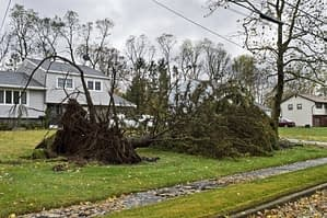 storm cleanup services